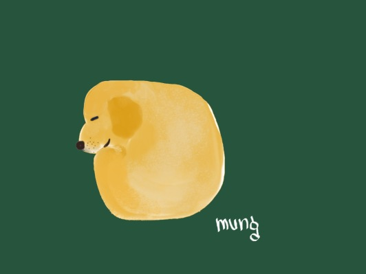 mung_1.jpg